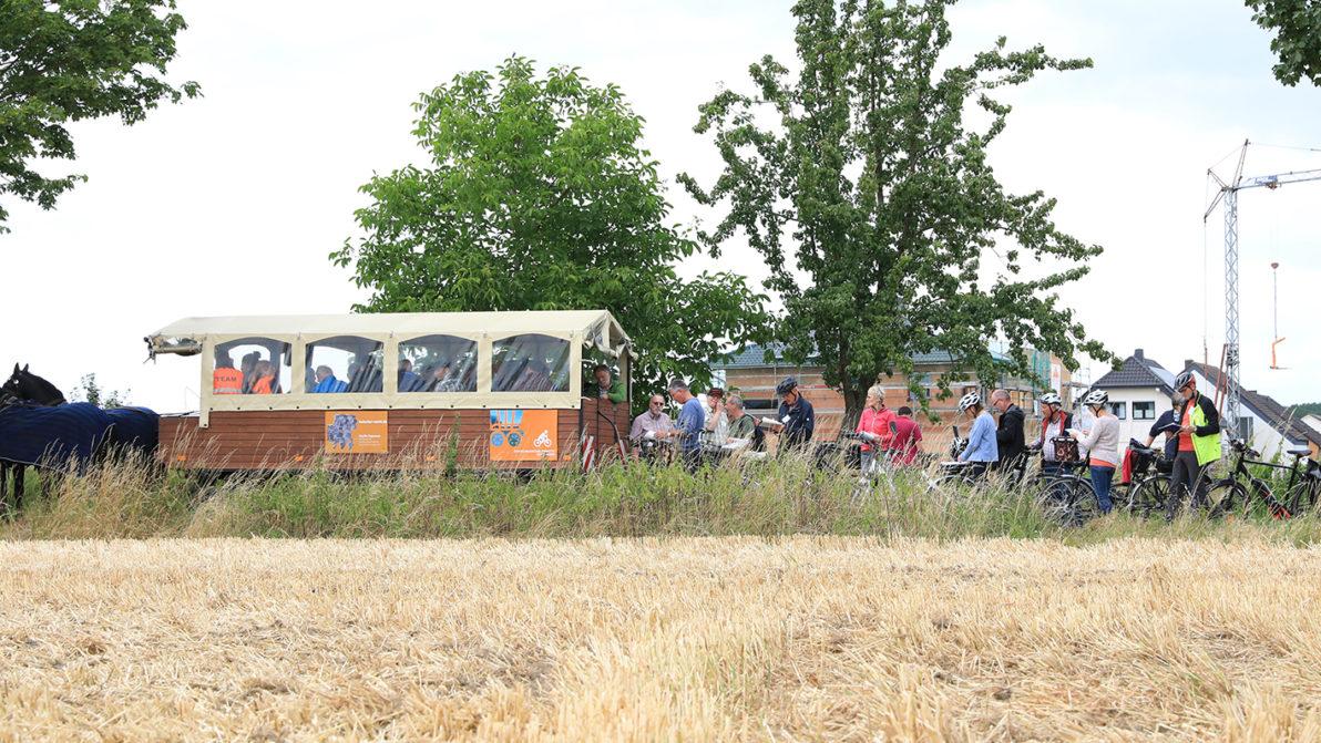 Planwagen und Fahrräder der Exkursion