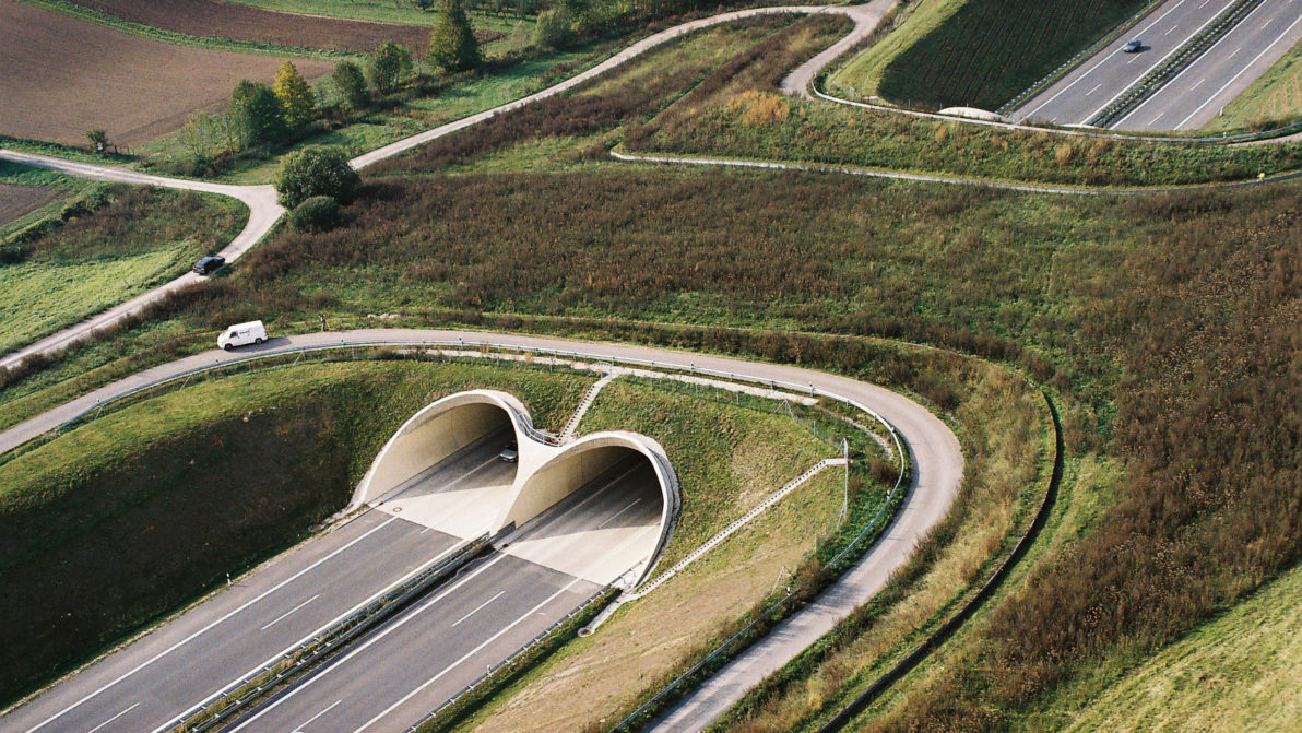 A 17 Tunnel Meuschaer Höhe