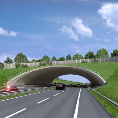 A 143 Grünbrücke Zorges (Visualisierung)