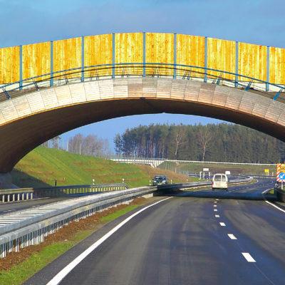 B 96 Wildbrücke in Holzbauweise, Foto: René Legrand