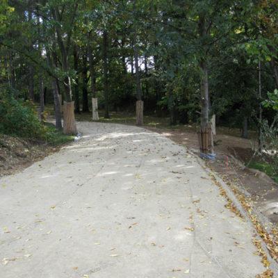 Zufahrtsweg im Grünen