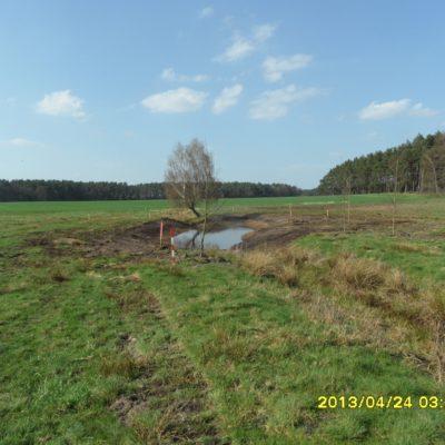 Grüne Fläche am Waldrand