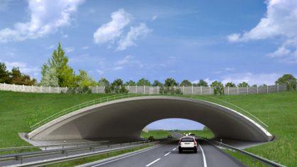 Eine Visualisierung der Grünbrücke Zorges