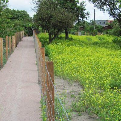 Grünfläche für Kleingartenzelle