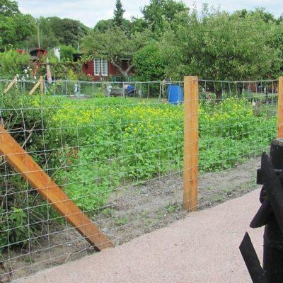 Grüne Flächen für Kleingartenparzellen