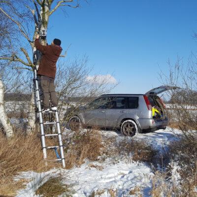 Montage der Wildkameras zur Beobachtung der Reaktion der Schwäne auf die Gülleausbringung