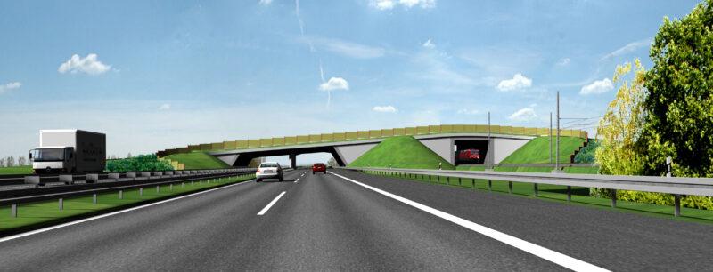 A 14, Visualisierung Grünbrücke