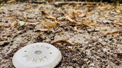 Messpunkt umrandet von Sand und Laub