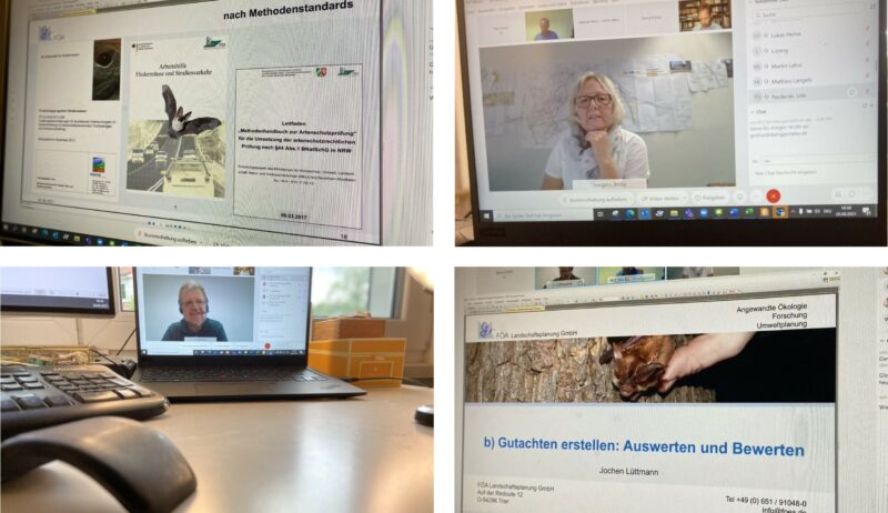 Experten erläutern Umweltthemen bei digitaler Infoveranstaltung.